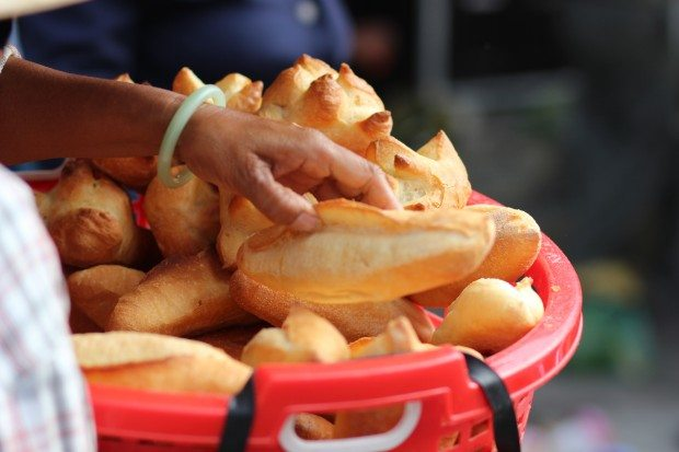 Food, Energy, Cravings & Beyond
